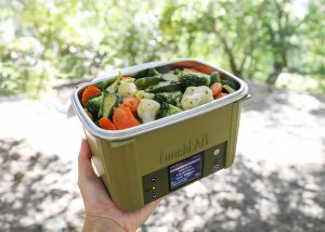 Green LunchEAZE with vegetables